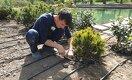 Сакуры, магнолии, бонсай: ботанический сад Алматы готовится к открытию