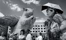 Почему казахстанцы воспринимают в штыки все начинания власти?