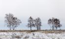 Налог на неиспользуемые земли в Казахстане увеличат в 20 раз