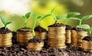 Фермерам предлагают перейти на криптовалюту - bidaiCoin