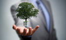 Устойчивое развитие: как большой бизнес помогает малым компаниям