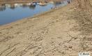 В Урале сначала массово гибла рыба, а теперь моллюски