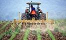 Здоровая почва - стратегический актив страны