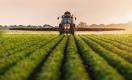 Почему надо разрешить продажу сельхозземель в Казахстане