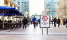 Почему у сигарет и никотина разное будущее