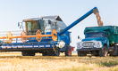 Кому Казахстан продаст зерно нового урожая