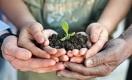 На чём смогут заработать аграрии Казахстана в новом сезоне