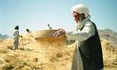 Афганистан и мировая экономика: назад в семидесятые?