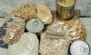 Главное - не выбрасывать еду. Как работает Продовольственный банк Казахстана