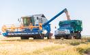 Иран готов купить казахстанскую пшеницу, предназначенную для Афганистана