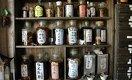 Пиявки и ромашка. Минздрав легитимизирует «народную медицину». Чем это грозит пациентам?