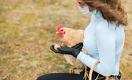 Вспышка птичьего гриппа: можно ли заразиться через мясо и яйца?