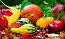 Когда многострадальная агрополитика Казахстана принесет плоды